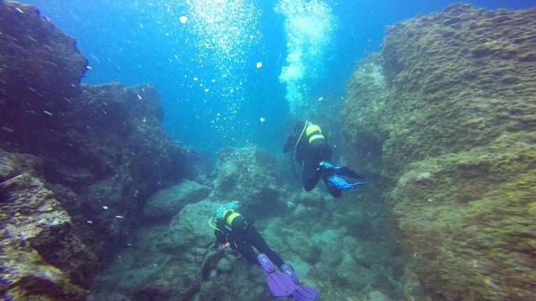 InterSkill scuba diver training